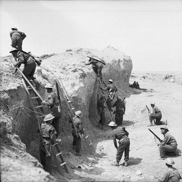 British Army in Tunisia 1943