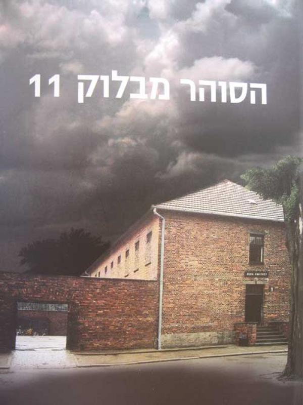 amir cover 2  11