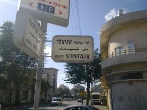 schnizler street tel aviv