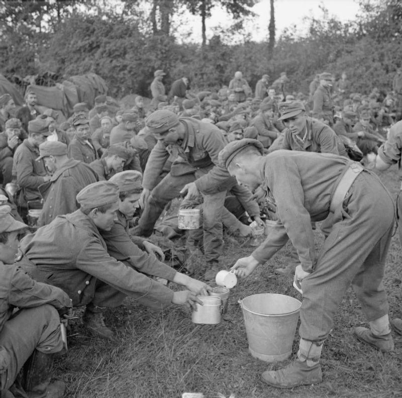 The_British_Army_in_Normandy_1944_B9627 The British Army in Normandy 1944 Tea is served to German prisoners in the Falaise pocket, 22 August 1944