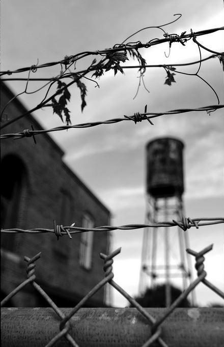 gulag 4