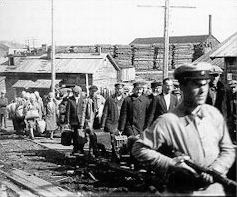 gulag 88 small