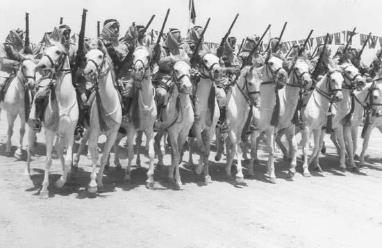 arab legion 4