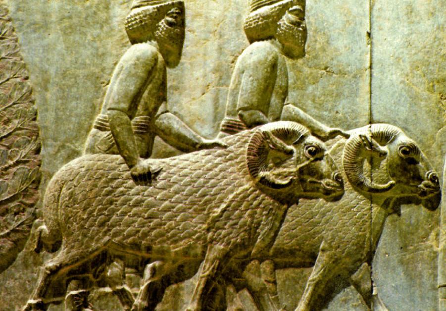 Mesopotamia homens e ovelhas